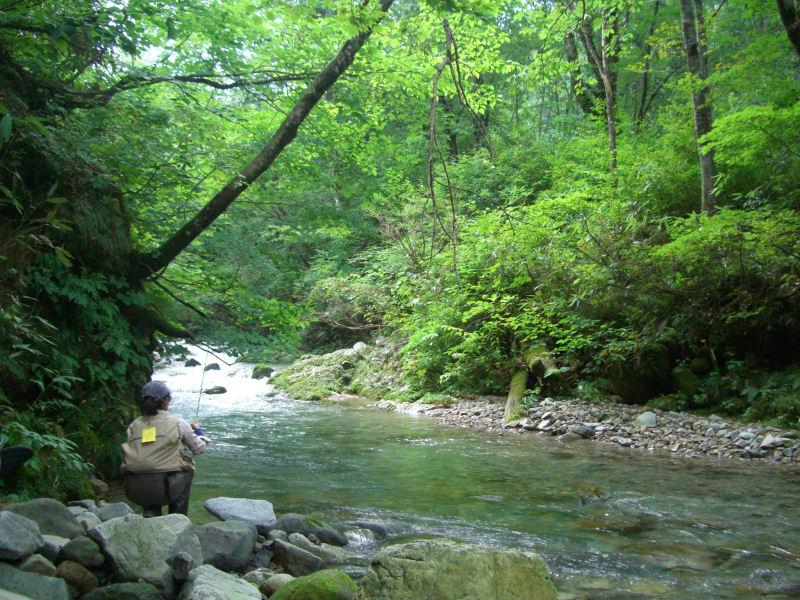 http://gypsy-trails.com/BLOG-NAME/bigmatagikei2.jpg